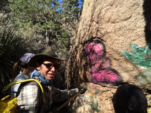 UNMWild Graffiti removal during